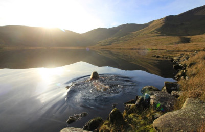 Why wild swimming in depths of winter is the new natural high
